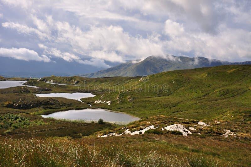 tigga för lakesloughen för fräckhet irländsk oughter tre arkivbild