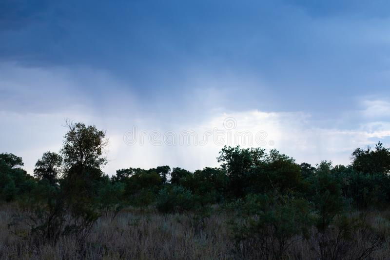 A tight and cloudy sky through. The sky before the storm. It`s starting to rain. Silhouettes of trees. The night comes in the wil. A tight and cloudy sky. The royalty free stock photos