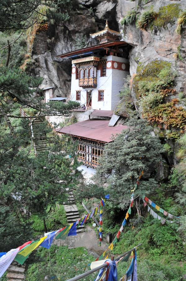 Tigrar bygga bo monastary i Paro, Bhutan royaltyfria bilder
