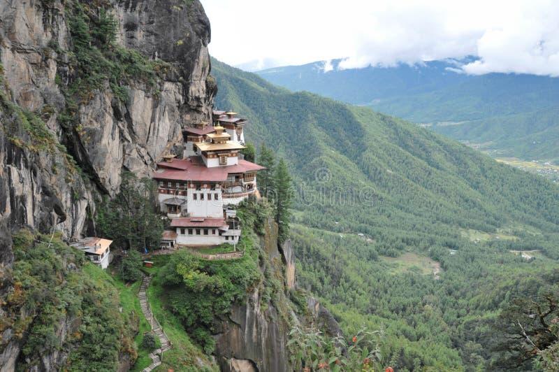 Tigrar bygga bo monastary i Paro, Bhutan royaltyfri bild