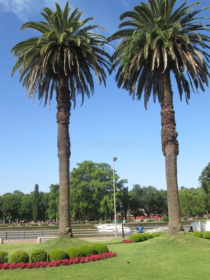Tigre, Буэнос-Айрес Аргентина Река, watter, перемещение, временя стоковые изображения rf
