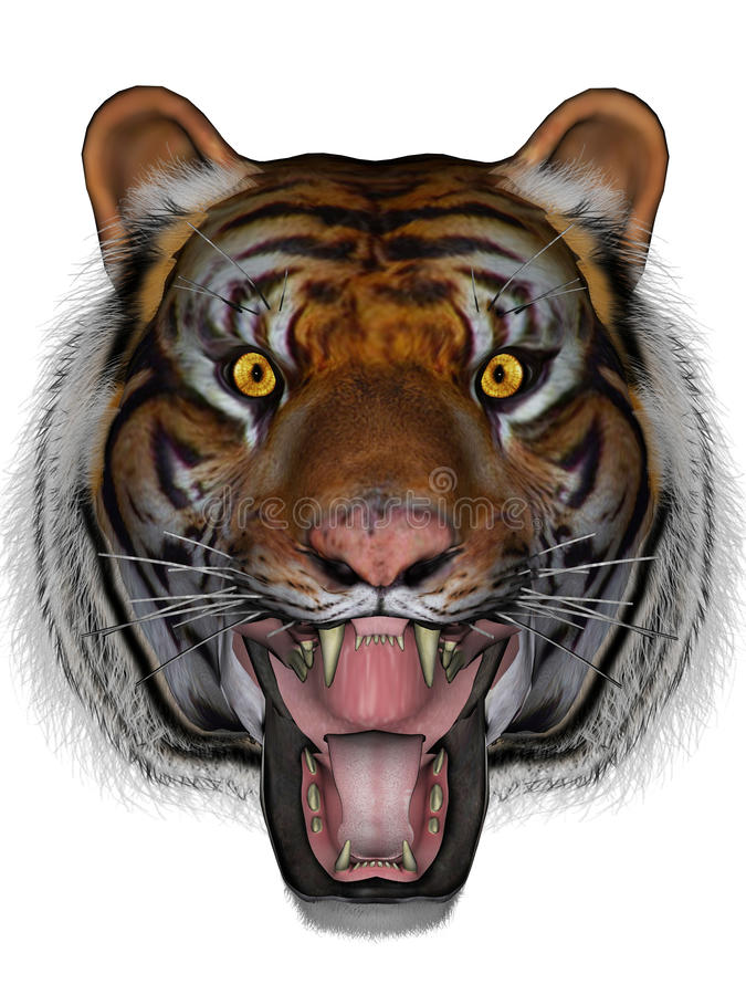 Tigre illustration de vecteur
