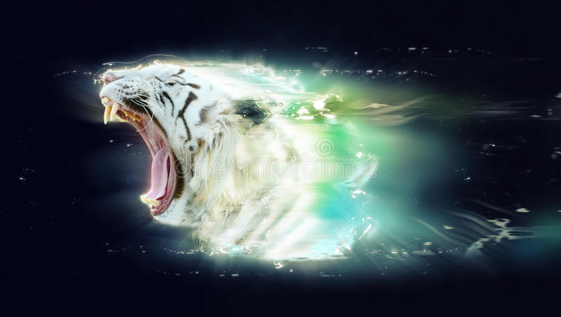 Tigre branco com maxilas abertas, conceito animal abstrato ilustração do vetor