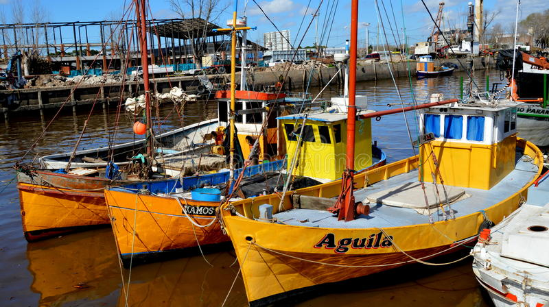 Tigre, Buenos Aires. Boats in the harbor of Tigre, Buenos Airesn stock image