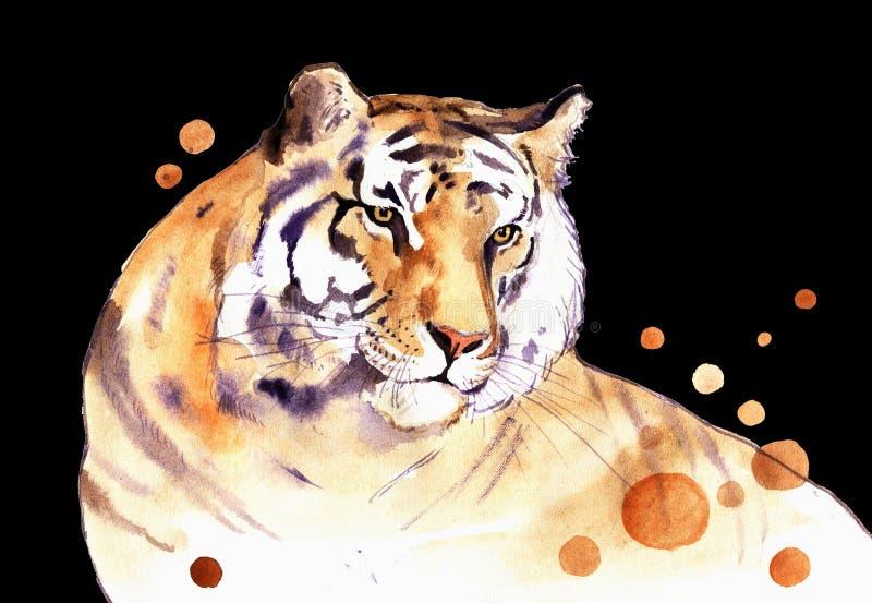 Tigre da aquarela ilustração royalty free
