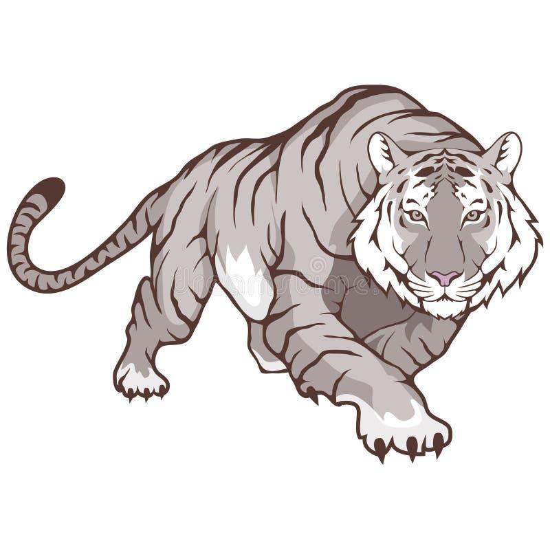 Tigre de Bengal branco ilustração stock
