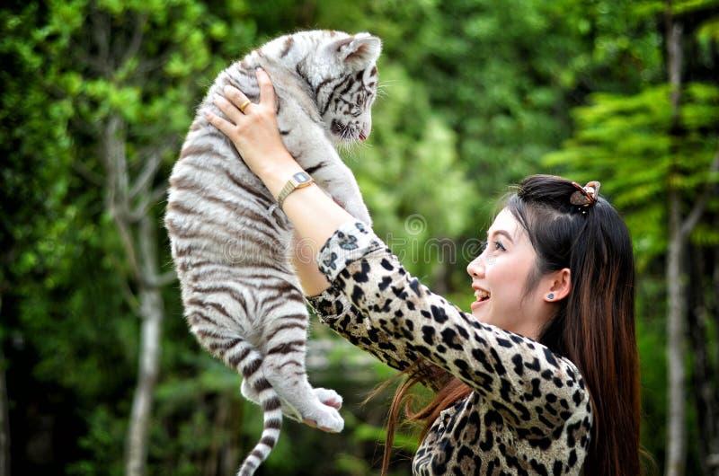 Tigre de bengal branco do bebê da posse das mulheres imagem de stock royalty free