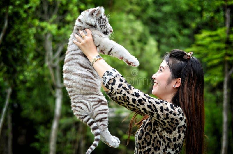 Tigre de bengal branco do bebê da posse das mulheres imagens de stock royalty free