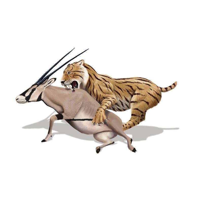 Tigre de dent de sabre illustration de vecteur