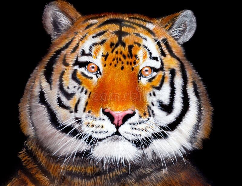 Tigre disegnata a mano fotografia stock libera da diritti