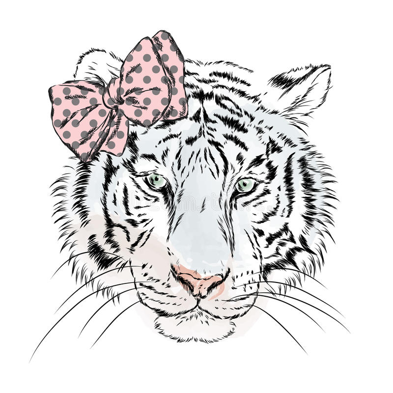 Tigre fêmea do vetor com uma curva Menina hipster ilustração royalty free