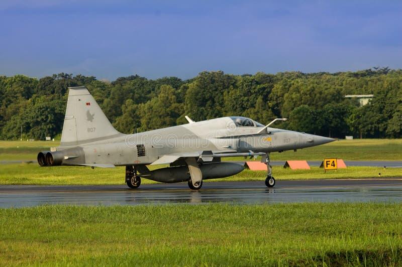 Tigre F-5 II fotografía de archivo libre de regalías