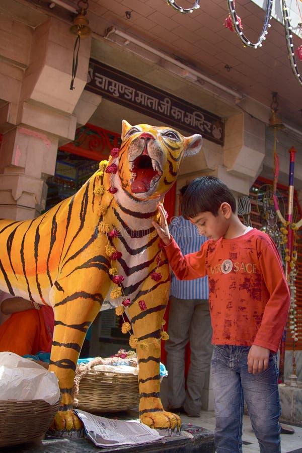 Tigre falsificado perto de um dos templos indianos fotografia de stock royalty free