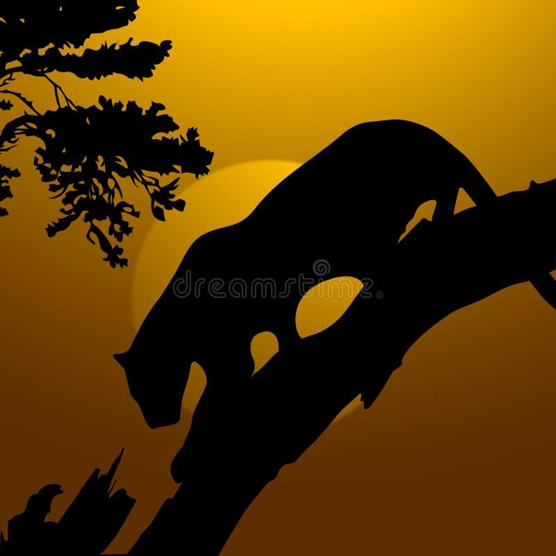Tigre, fauna libre illustration