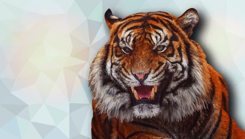 Tigre no baixo estilo poli Ilustração do vetor ilustração royalty free