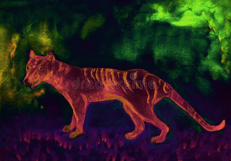 Tigre tasmaniano no aurora australis ilustração stock