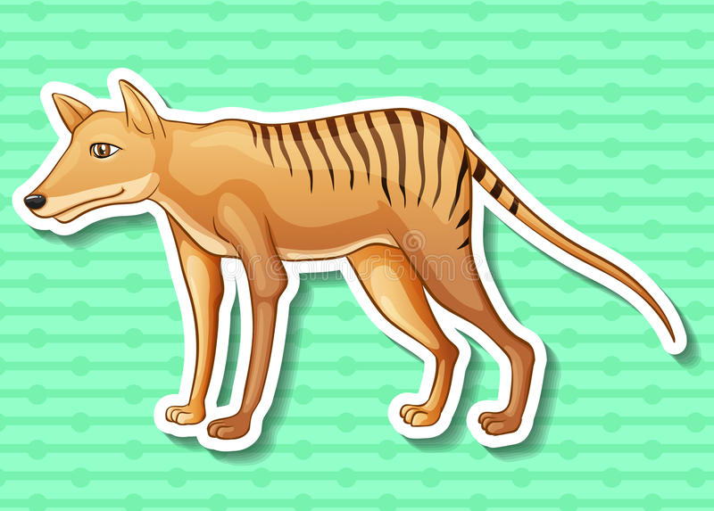Tigre tasmanien illustration stock