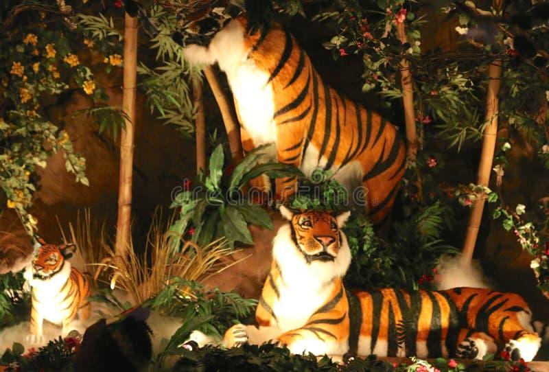 Tigres au café de forêt tropicale, Nashville Tennessee images libres de droits