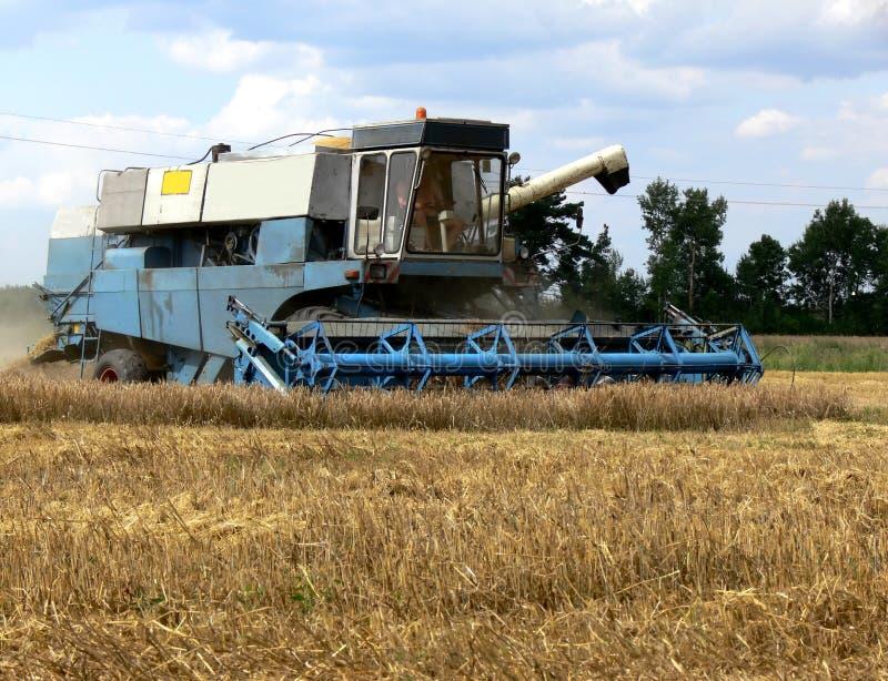 Tijd 1 van de oogst stock foto's