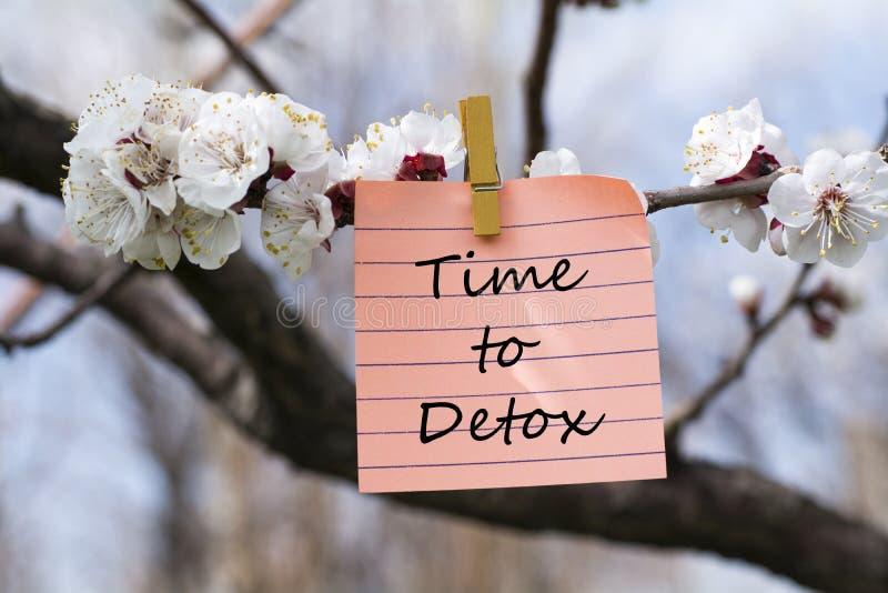 Tijd aan detox in memorandum royalty-vrije stock afbeelding