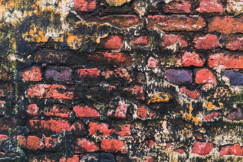 Tijolo vermelho velho do fundo com molde foto de stock