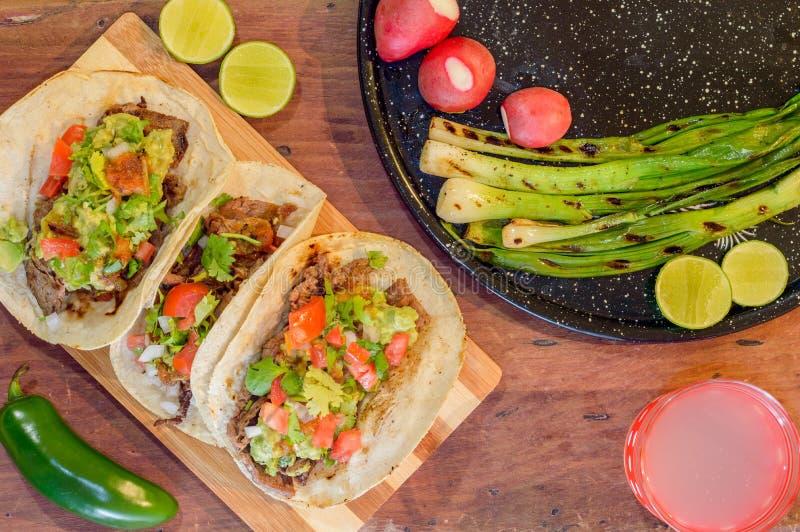 Tijuana taco, grillad carneasada med kopieringsutrymme royaltyfria foton