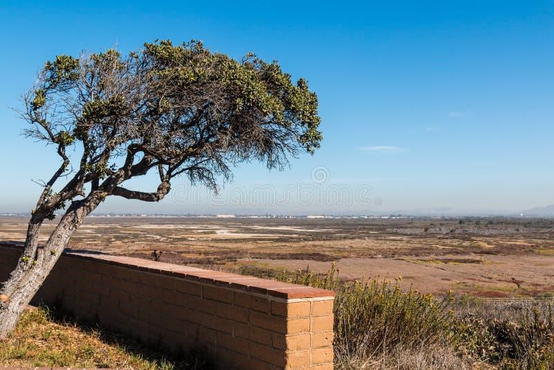 Tijuana ujścia Viewing punkt w San Diego obraz royalty free