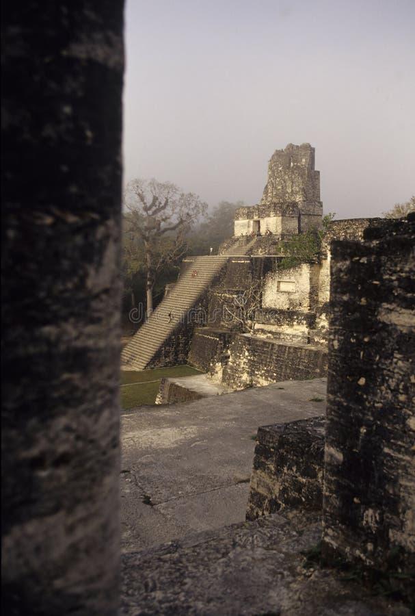 tikal危地马拉玛雅的废墟 免版税库存照片