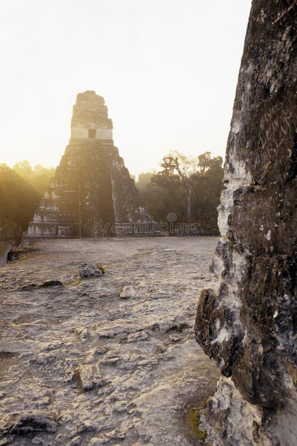 tikal危地马拉玛雅的废墟 库存图片