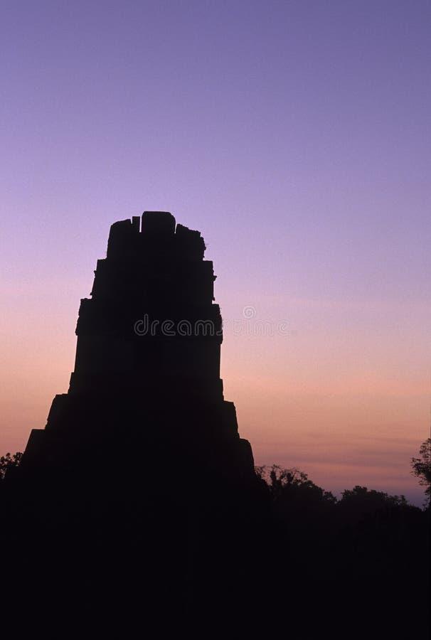 tikal危地马拉玛雅的废墟 免版税库存图片