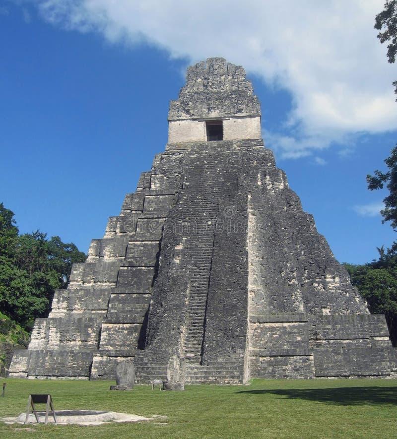 tikal极大的危地马拉捷豹汽车的寺庙 库存图片