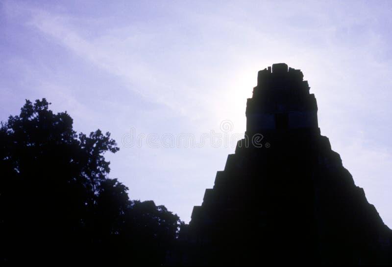 tikal的寺庙 免版税库存照片