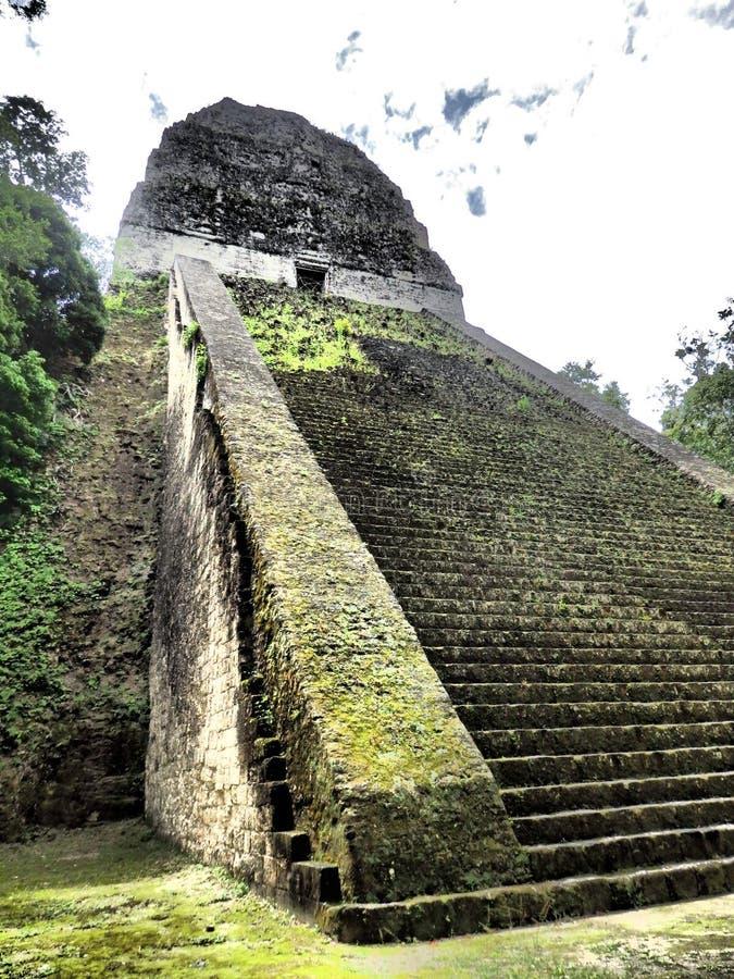 Tikal royaltyfria foton