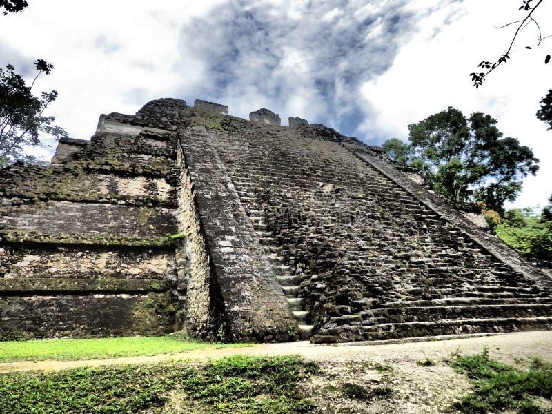Tikal royaltyfri foto