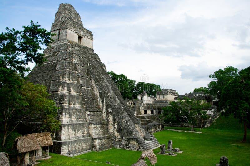 Tikal royaltyfri bild