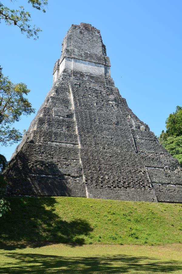 Tikal Archeologische Plaats in Guatemala stock fotografie