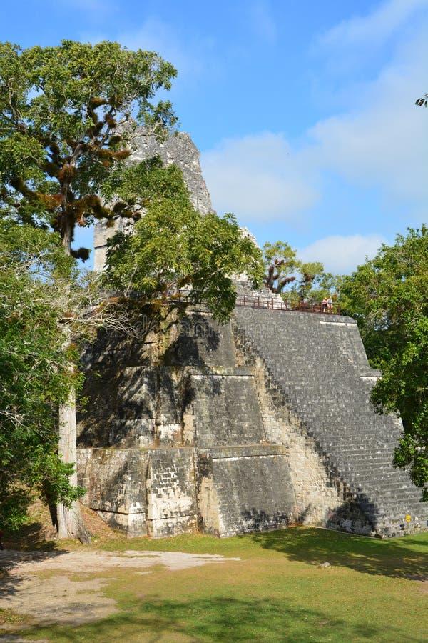 Tikal Archeologische Plaats in Guatemala stock afbeelding