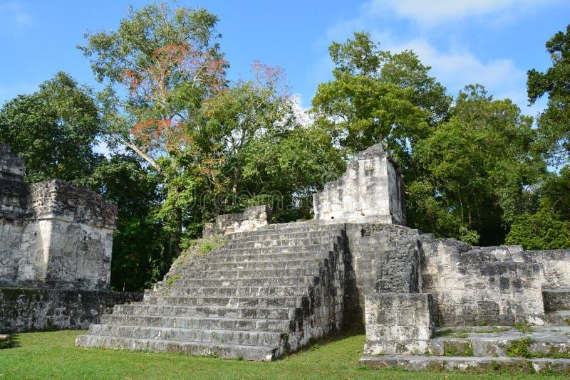 Tikal Archeologische Plaats in Guatemala royalty-vrije stock afbeelding