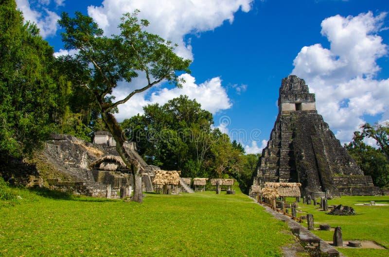 Tikal Guatemala fotos de archivo