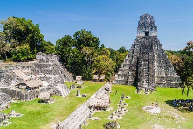 TIKAL, GUATEMALA - 14 DE MARZO DE 2016: Turistas en la plaza de Gran en el sitio arqueológico Tikal, Guatema imágenes de archivo libres de regalías
