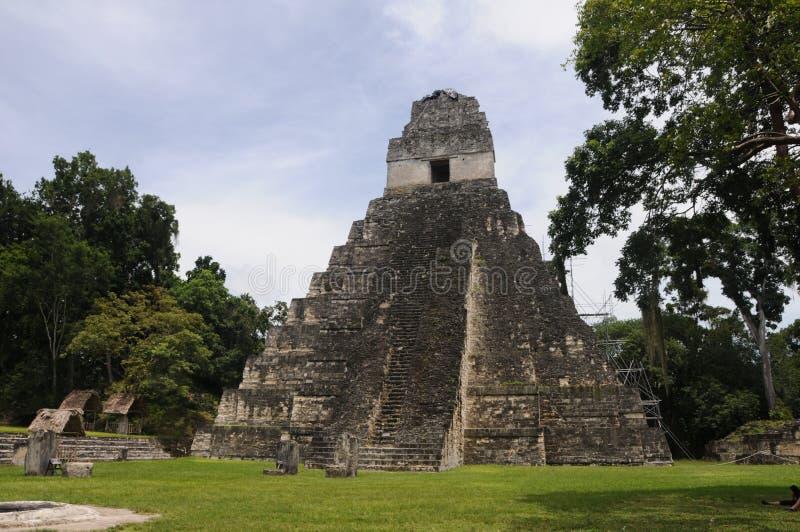 tikal guatemala mayan pyramid royaltyfria foton