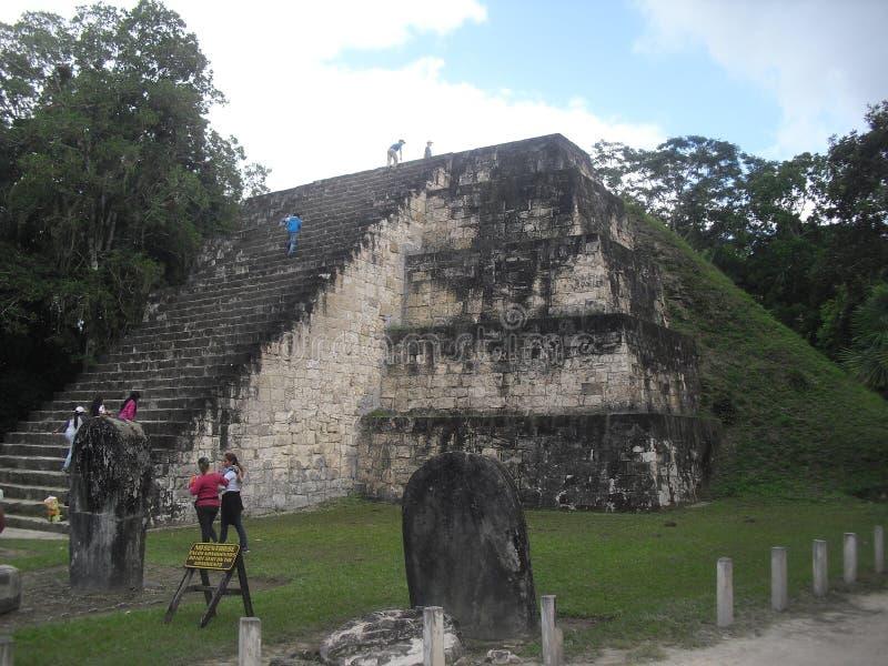 Tikal, Peten, Guatemala, Amérique Centrale 20 photographie stock libre de droits