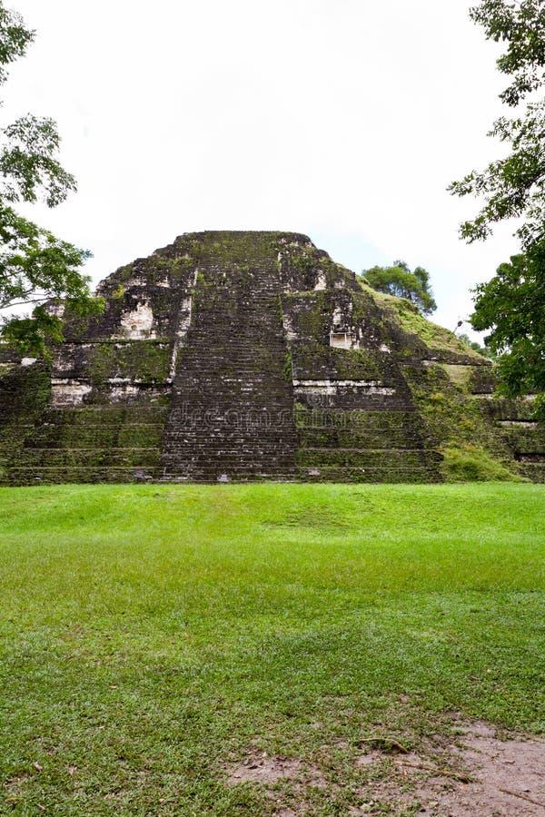 Tikal, ruinas mayas imagen de archivo