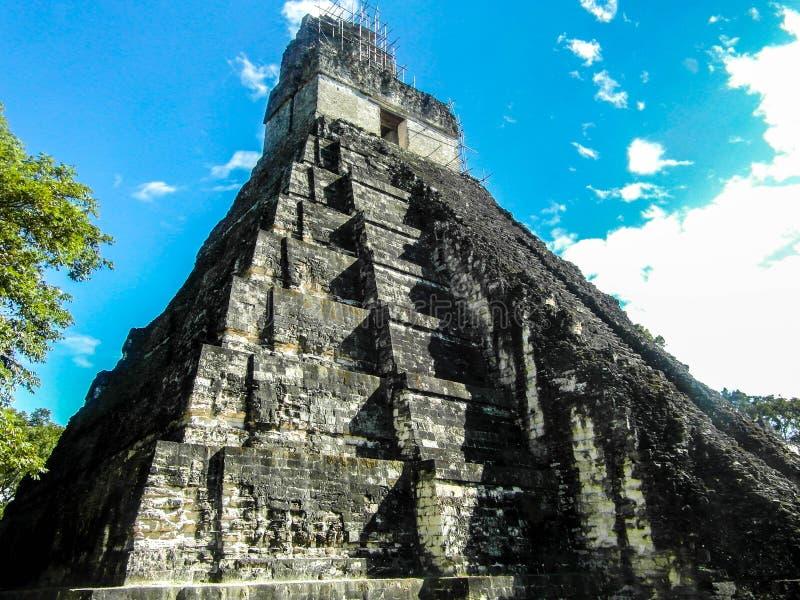 Tikal ruiniert Guatemala, großen Jaguar-Tempel stockfotos
