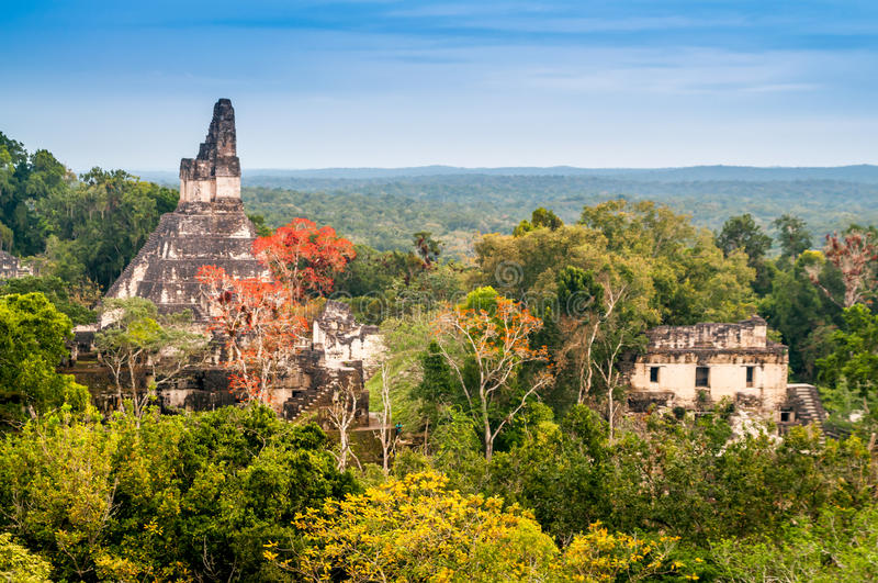 Tikal tempel arkivfoto