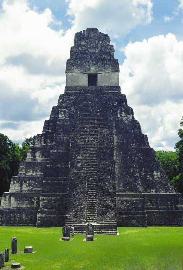 tikal tempel arkivbilder