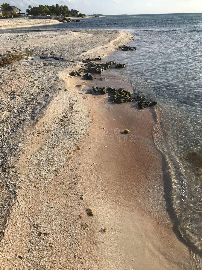 Tikehau roze strand royalty-vrije stock afbeeldingen