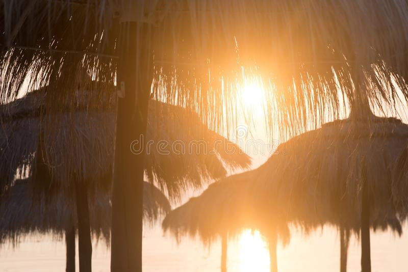 Tiki hut umbrellas, thatch. Sunrise, sunset view on beach in Tunisia stock image