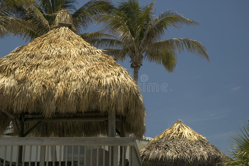 Tiki huts. And palm trees with a blue sky royalty free stock photography