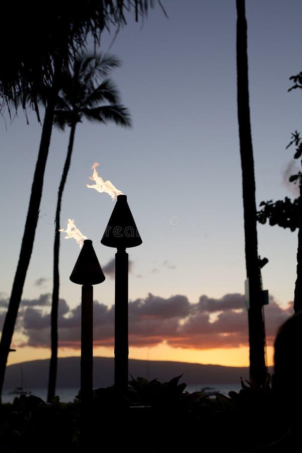 Tiki Torch imagem de stock royalty free